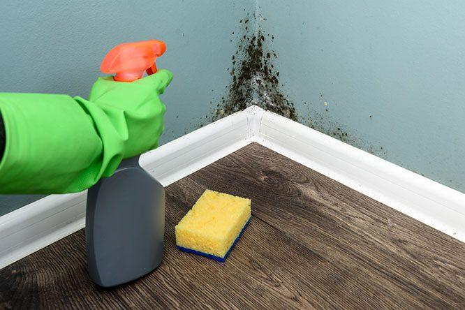 شركة تنظيف مسابح بالجبيل 0508011581